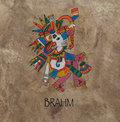 BRAHM image