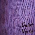 Quiet Noise image
