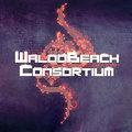 Mc Waloobeach/Waloobeach Consortium image
