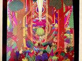 Mike Gangloff 'Poplar Hollow' Red & Green Swirl 180 gram Vinyl LP photo