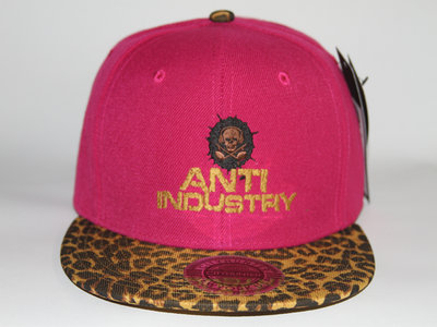 Pink & Leopard print Antiindustry snapback main photo