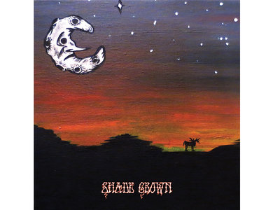 MV & EE 'Shade Grown' Transparent Teal 180 gram Vinyl LP main photo