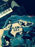 Alaskan Firedog image