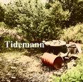 Tidemann image