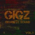 GIGZ image
