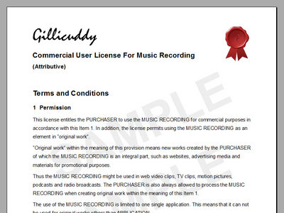 Commercial User License for Music Recording (Attributive) main photo