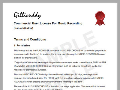 Commercial User License for Music Recording (Non-attributive) main photo