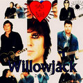 Willowjack image