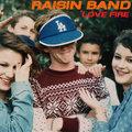 Raisin Band image
