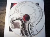 "AMOK022A - this is esophagus - ""Terra Firma E.P."" CD photo"