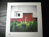 """AMOK033 - the One (family) - """"sprout_tiers"""" CD photo"""