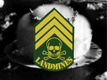 The Landmines image