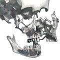 Beauchene Skulls image