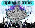 Optimus Tribe image
