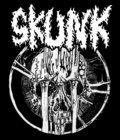 skunk image