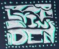 Lyin's Den Productions image
