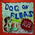 Dog on Fleas image