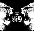 LION KNGS image