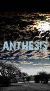Anthesis image
