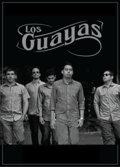 Los Guayas image