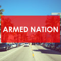 ARMED NATION image