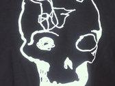 Cranium photo