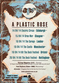 A Plastic Rose image