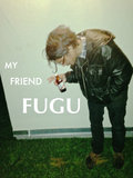My Friend Fugu image