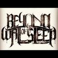 Beyond The Wall Of Sleep image