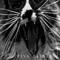 Viva Cats! image