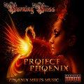Project Phoenix image