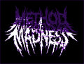 Method Of Madness image