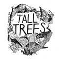 Tall Trees image