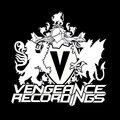 Vengeance image