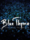 Blue Thyme image