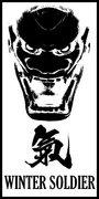 Winter Soldier image