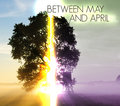 Between May and April image