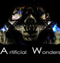 Artificial Wonders image