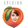 Urchinn image