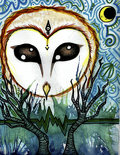 The Owl Eyed Man image