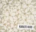 Karate Kids image