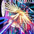Calm Animals image