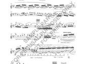 Crumpler Clarinet Concerto No. 1 (Solo Part in A) photo