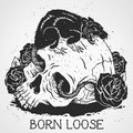 Born Loose image