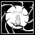 Static Scene image