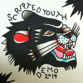 Scripted Youth image