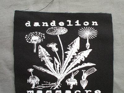 Dandelion diagram patch dandelion massacre dandelion diagram patch main photo ccuart Image collections