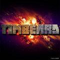 Timbeard image