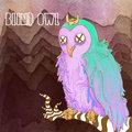 Blind Owl image