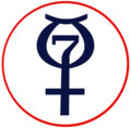 The Mercury Seven image